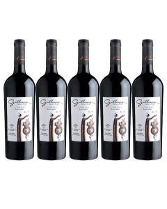 Pack 6 Vinos Hacedor de Mundos Reserva Cabernet Franc 750cc