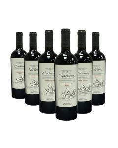 Pack De 6 Vinos Cepas Del Maule Family Reserve Cabernet-Syrah 750cc